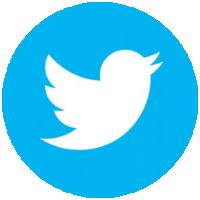 Twitter button round